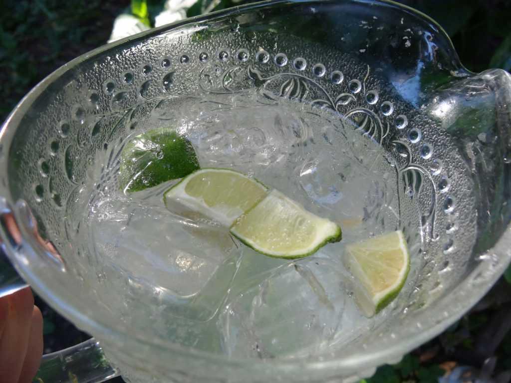 Homemade Limonade 1